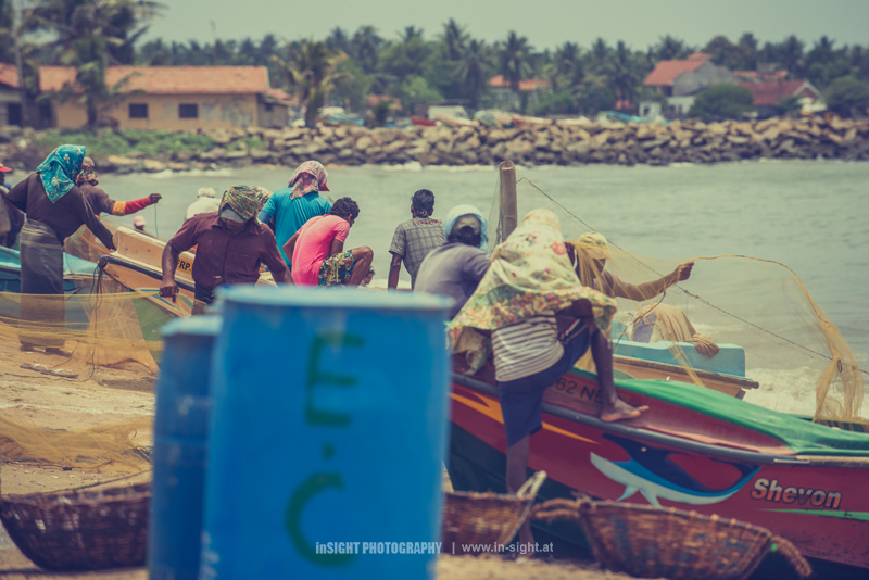 SRI-LANKA_NEGOMBO-FISHMARKET_20150902_018