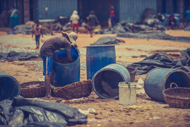 SRI-LANKA_NEGOMBO-FISHMARKET_20150902_019