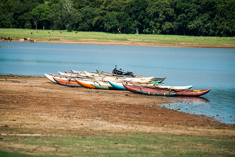 Boats at a lake in Minneryia National Park, Sri Lanka